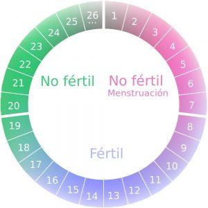embarazo durante periodo